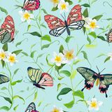 Tropical Flowers and Butterflies Seamless Pattern. Floral Jungle. Tropical Flowers and Butterflies Seamless Pattern. Floral Jungle Background for Fabric and Stock Image