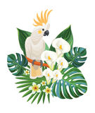 Tropical flowers and cockatoo. Vector illustration. Tropical flowers and cockatoo. Vector illustration royalty free illustration