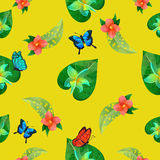 Tropical Flowers. Floral Background. Flowers Seamless Pattern. Royalty Free Stock Image