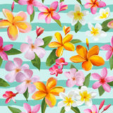 Tropical Flowers Geometric Background Stock Image