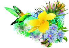 Hummingbird over a tropical flower. royalty free stock images