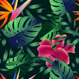 Tropical flowers, jungle leaves. Beautiful seamless vector floral pattern background, exotic print Royalty Free Stock Image