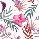Tropical flowers, jungle leaves, bird of paradise flower. Royalty Free Stock Photo