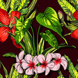 Tropical flowers, jungle leaves, paradise flower. Beautiful seamless vector floral pattern background, exotic print. Stock Photography