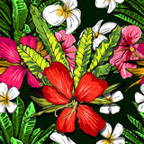 Tropical flowers, jungle leaves, paradise flower. Beautiful seamless vector floral pattern background, exotic print. Royalty Free Stock Image