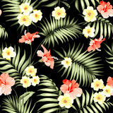 Tropical flowers and jungle palms. royalty free illustration