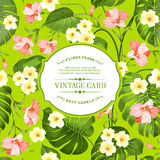 Tropical flowers label. Royalty Free Stock Images