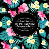 Tropical flowers label. Stock Images