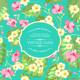 Tropical flowers label. Royalty Free Stock Photos