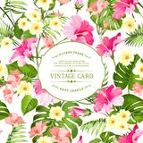 Tropical flowers label. Royalty Free Stock Image