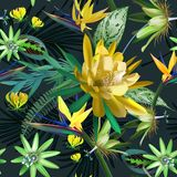 Tropical seamless pattern of cactus flowers and exotic leaves stock photos