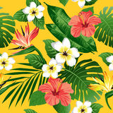 Tropical flowers and leaves on background. stock illustration