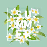 Tropical Flowers and Leaves Background. Summer Design Royalty Free Stock Photos