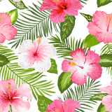 Tropical Flowers and Leaves Background Stock Photography