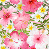 Tropical Flowers and Leaves Background Royalty Free Stock Photos