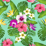 Tropical flowers and leaves on blue background. Seamless. Vector. Royalty Free Stock Image