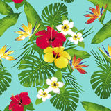 Tropical flowers and leaves on blue background. Seamless. Vector. Stock Images
