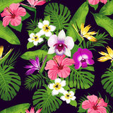 Tropical flowers and leaves on blue background. Seamless. Vector. Royalty Free Stock Photo