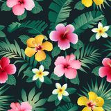 Tropical flowers and leaves on dark background. Seamless. Vector. Stock Photo