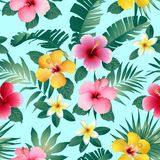 Tropical flowers and leaves on dark Gray background. Seamless. Vector. Stock Photo