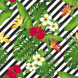 Tropical flowers and leaves on diagonal background. royalty free illustration