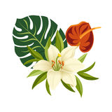 Tropical flowers and leaves. Elegant floral vector composition. Colorful cartoon illustration. Isolated on a white background Royalty Free Stock Photo