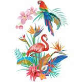 Tropical Flowers Flamingoes and Parrots Stock Photos