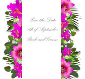 Tropical flowers and leaves. Floral design background. Bright co Stock Images