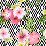 Tropical Flowers and Leaves Geometric Background. Vintage Seamless Pattern - in vector Royalty Free Stock Images