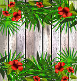Tropical flowers and leaves over wood, bright illustration Royalty Free Stock Image