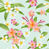 Tropical Flowers and Leaves Pattern. Seamless Background Stock Photo