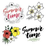 Tropical Flowers and Leaves Set. Exotic Plumeria Flower. Floral Wreaths and Banners. Vector stock illustration