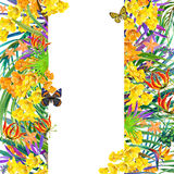 Tropical flowers, leaves. watercolor illustration Royalty Free Stock Photography