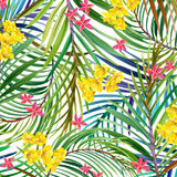 Tropical flowers, leaves. watercolor illustration Stock Photo