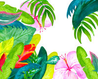 Tropical flowers and leaves watercolor postcard with place for text Stock Photography