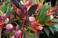 Tropical flowers, Market at Cacao, French Guiana. Stock Images