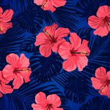 Tropical flowers and palm leaves on background. Seamless. Vector pattern. Tropical flowers and palm leaves on background. Seamless Vector pattern Royalty Free Stock Photography