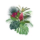 Tropical flowers, palm monstera leaves, hibiscus and protea flower. Vector exotic illustrations, floral elements isolated, Hawaiian bouquet for greeting card vector illustration