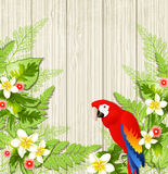 Tropical flowers and parrot Royalty Free Stock Photography
