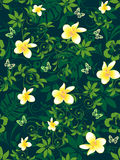 Tropical Flowers Pattern Stock Image