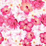 Tropical flowers with pink background seamless pattern Stock Photography