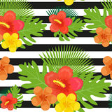 Tropical flowers, plants, leaves and black and white stripes seamless pattern. Endless summer floral background Royalty Free Stock Photo