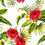 Tropical flowers and plants pattern vector illustration