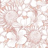 Tropical flowers seamless pattern - white hand drawn exotic blooms and leaves with color line contour. Tropical flowers seamless pattern - white hand drawn Stock Images