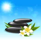 Tropical flowers and spa stones Stock Photo