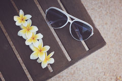 Tropical flowers and sunglasses on the bench Stock Photo