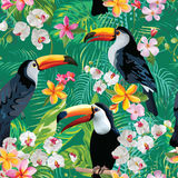 Tropical Flowers and Toucan Birds Vintage Background. Seamless Summer Pattern royalty free illustration