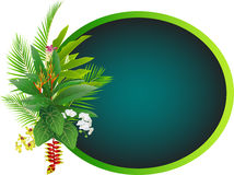 Tropical flowers and tree background for wedding Royalty Free Stock Photography