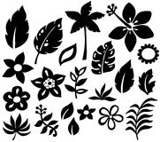 Tropical Flowers Vector Illustration. Tropical Flowers, Palm Tree, and Leaf Vector Silhouettes stock illustration