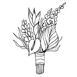 Tropical flowers. Vector illustration. Stock Photo